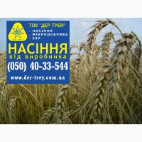 Семена озимой пшеницы Шестопаловка, урожай 2017 года от компании Дер Трей