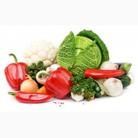 Продам Овощи, Борщевой набор