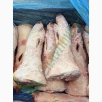Ноги свиные (задние) оптом