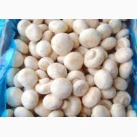 Продаем качественные грибы шампиньоны свежие чистые светлые размер 2-3-4