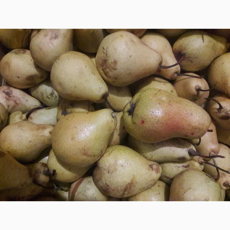 Фото 3. Продам сок яблочный, яблочно-грушевый, прямого отжима