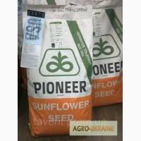 Оригинальные семена гибридов подсолнечника PIONEER