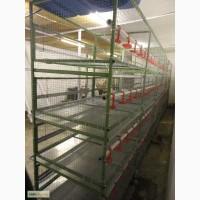Минифермы, клетки, клеточное оборудование для несушек, бройлеров, перепелов, цыплят.