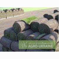 Поставляем технологии производства рулонных газонов