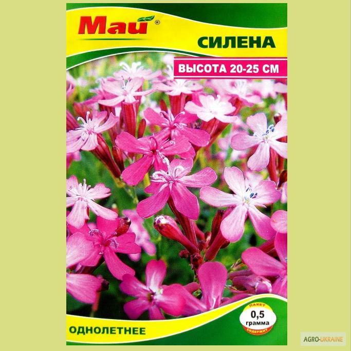 Купить семена цветов дешево