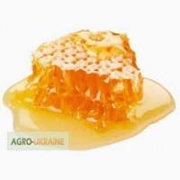 Продам мёд Белой акации