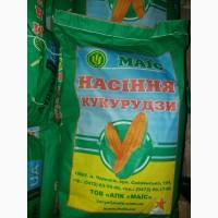 Продам гібрид кукурузи ПЛАТИНУМ (2017 р.)