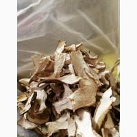 Продам сушені білі гриби (белые сушеные грибы)