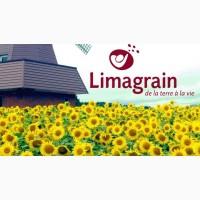 Распродажа 2017 года! Продам семена подсолнечника LIMAGRAIN в ассорт