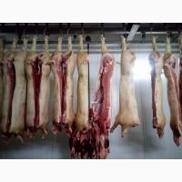 Свинина беконная 1 категории охлажденная и живым весом