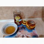 Продам липовый мёд
