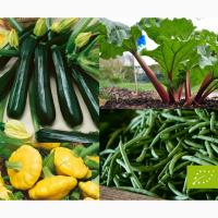 Продамо органічні овочі урожаю 2019 року
