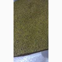 Семена козлятника-альтернатива люцерне 53 грн.фасовка 25 кг