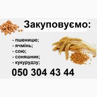Закуповуємо пшеницю, ячмінь, сою, соняшник, кукурудзу
