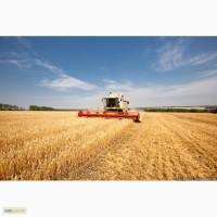 Услуги по уборке урожая комбайнами обработка земли посев по Украине