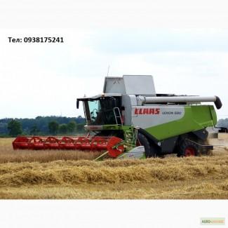 Уборка урожая комбайнами Claas Lexion 580