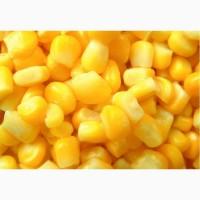 Куплю зерновые: ячмень, пшеница, кукуруза, соя