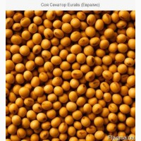 Продам сою ( урожай 2018 г.) 400 тонн