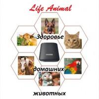 Лечение животных дома прибором Life Animal. Помощь ветеринару