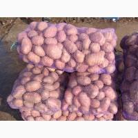 Сетка овощная 40*60 см 20 кг с завязками