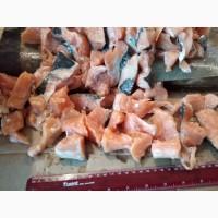 Продам мясо лосося