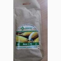 Семена сахарной кукурузы суперсладкая, сверхсахарная sh2-тип