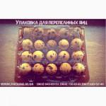 Многоразовая, качественная и лучшая упаковка под перепелиное яйцо в Украине