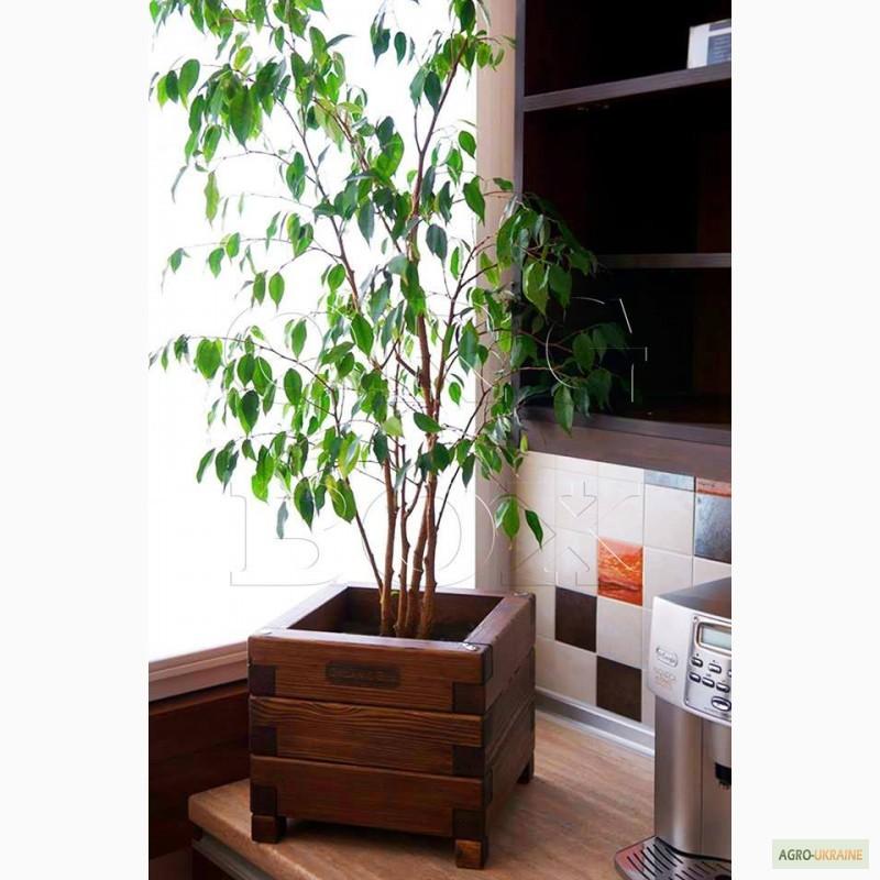 ящик для цветов кашпо из дерева цветочные ящики деревянные