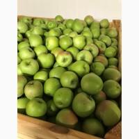 Продам яблуко Гренні Сміт