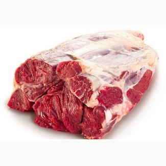 Продам голяшку говяжью