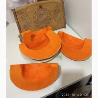 Продам семена тыквы чудо-юдо