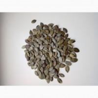 Продам гарбузове насіння сорт Госім#039;яна
