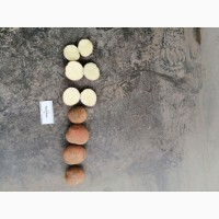 Картофель продовольственный 2020, калибр 5+, манифест, бриз