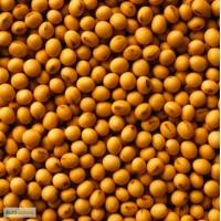 Семена канадской сои сорт Медисон (Medison) - 1 репродукция