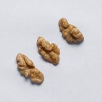 Закупаем 1/4 ядра грецкого ореха по всей Украине