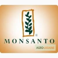 Рапс озимый семена Монсанто/Monsanto - сертификат производителя на продукцию