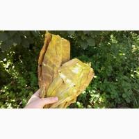 Табак Берли лист