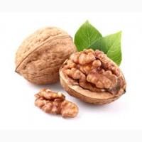 Продам грецкий орех 2018. Отличного качества 3 тонны