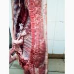 Свинина охложденная в п/т оптом