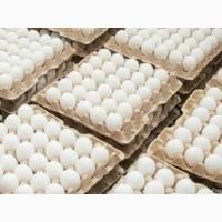 Реализуем куриное яйцо столовая с доставкой