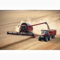 Збирання зернових сої кукурудзи соняшника