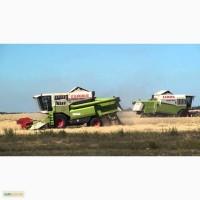 Уборка сельхозкультур комбайнами по Украине