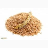 Продам отруби пшеничные ржаные пищевые