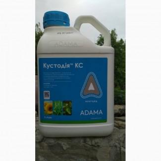 Кустодія КС - фунгіцид для пшениці озимої, ячменю, кукурудзи, соняшнику, ріпаку, сої