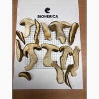 Продам гриби сушені фасовані