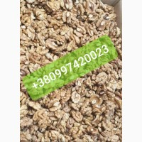 Наша компания, систематично продает на експорт ядро Грецкого ореха