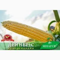 Семена сахарной кукурузы Дейнерис F1, 14кг 1пос.ед на 1, 5га