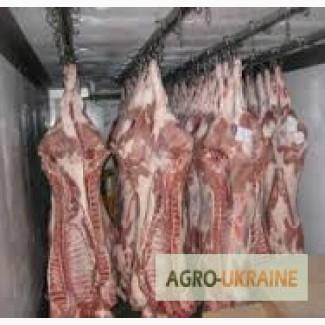 Свиные полутуши обрезные