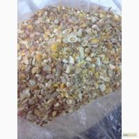 Куплю отходы кукурузы или некондицию