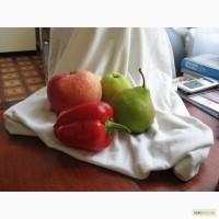 Саджанці плодових та ягідних культур